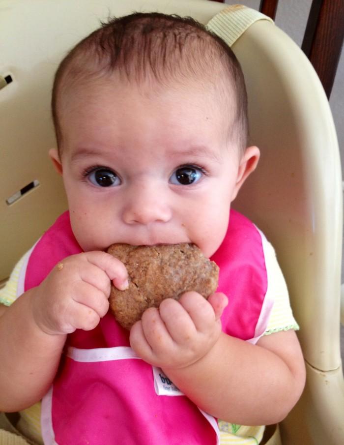 teething biscuits kendall 3