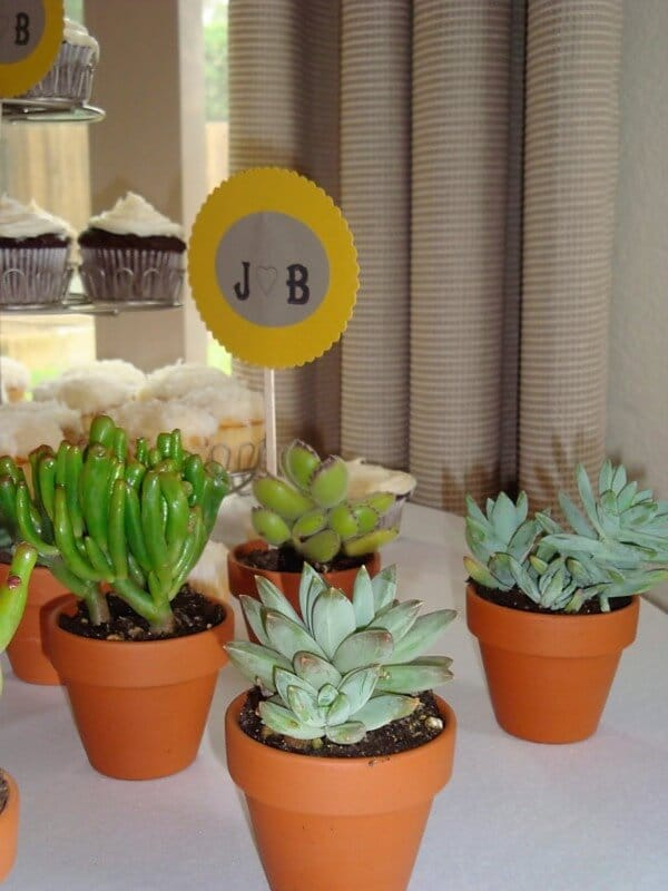 Succulent Bridal Shower | Yellow and Grey Bridal Shower | Succulent Party Decor | www.madewithHAPPY.com