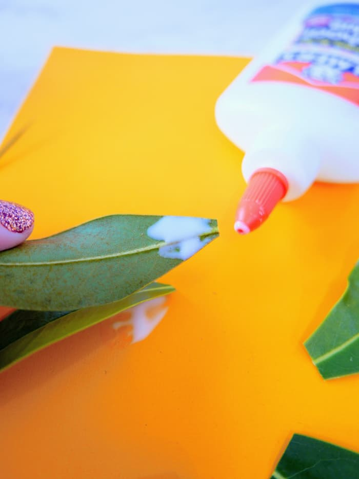 glue on a leaf