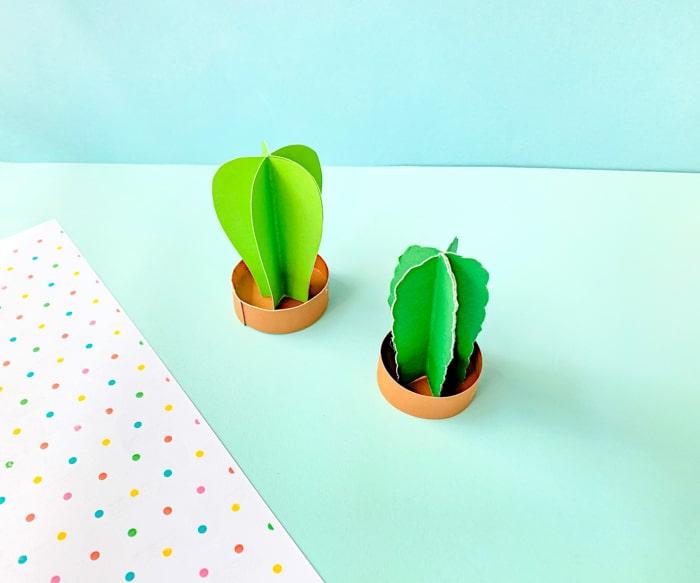 Putting Cactus Together