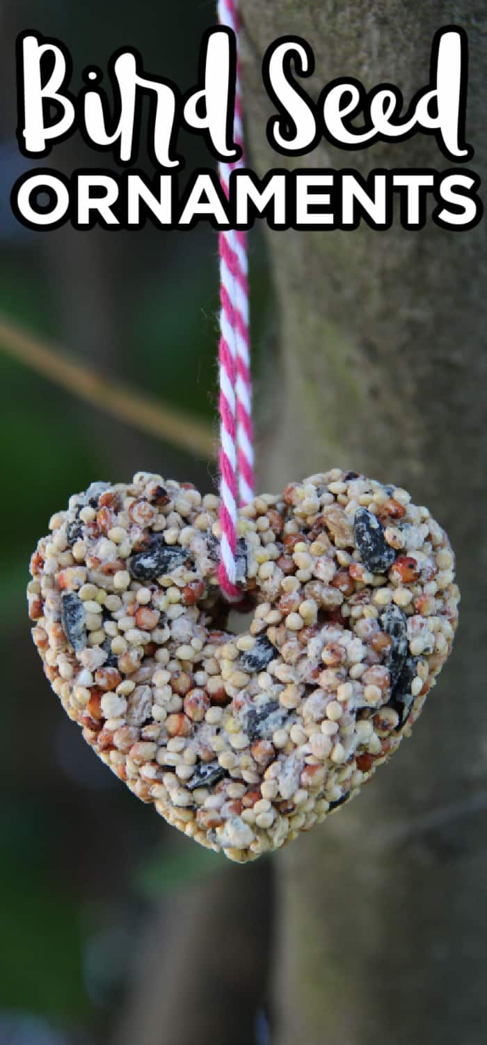 Heart Shaped Bird Seed Ornaments