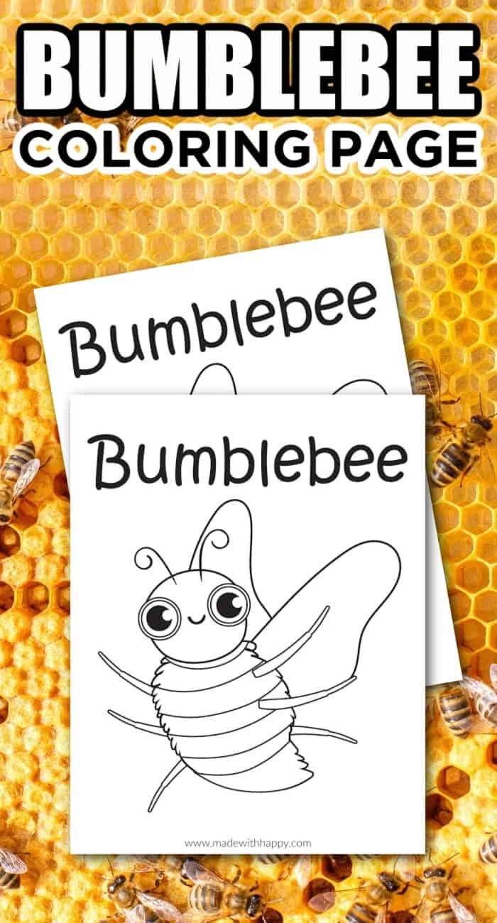 Bumble Bee Coloring Page For Kids