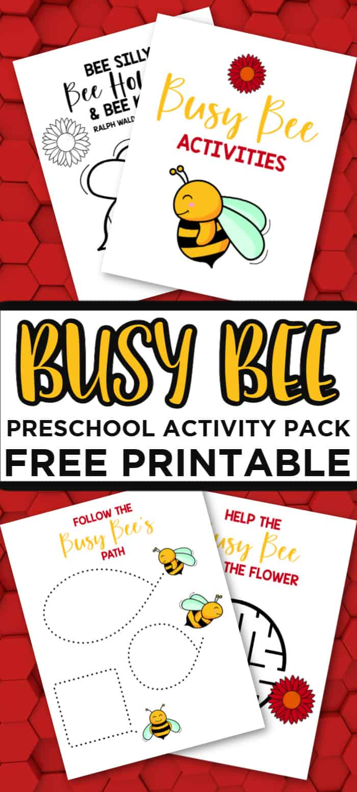 Busy Bee Preschool Activiites
