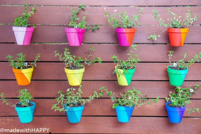 Color Blocking Hanging Flower Pots. Rainbow Garden. Colorful pots.