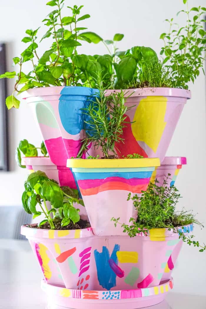 Growing your own herb garden. Colorful DIY Indoor herb garden. Looking for a colorful diy herb garden then look no further than this herb garden kit that we're sprucing up.