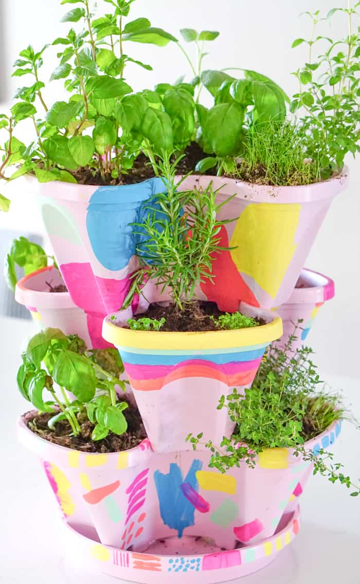 Ultimate Happy Herb Garden. Colorful DIY Indoor herb garden. Looking for a colorful diy herb garden then look no further than this herb garden kit that we're sprucing up.