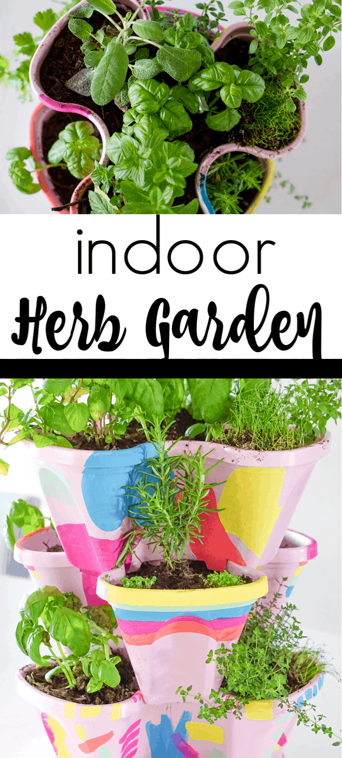 Growing your own Indoor herb garden. Colorful DIY Indoor herb garden. Looking for a colorful diy herb garden then look no further than this herb garden kit that we're sprucing up.