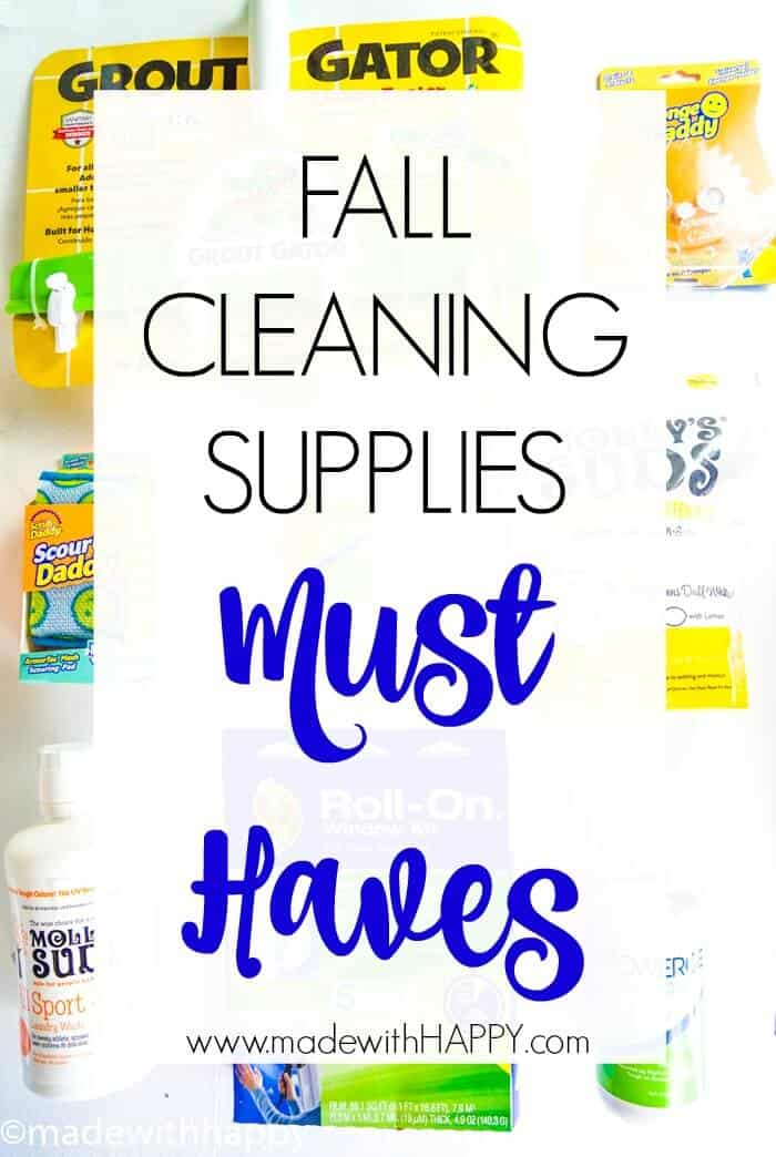 Fall Cleaning Supplies