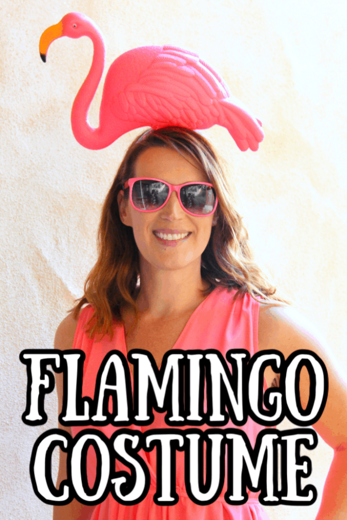 Flamingo Costume Pink