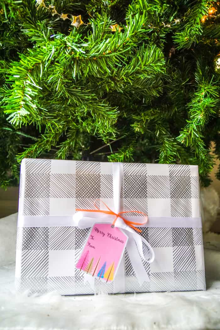 Gift Under the Tree