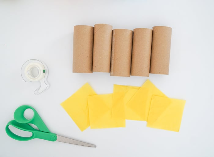 Toilet paper roll craft supplies