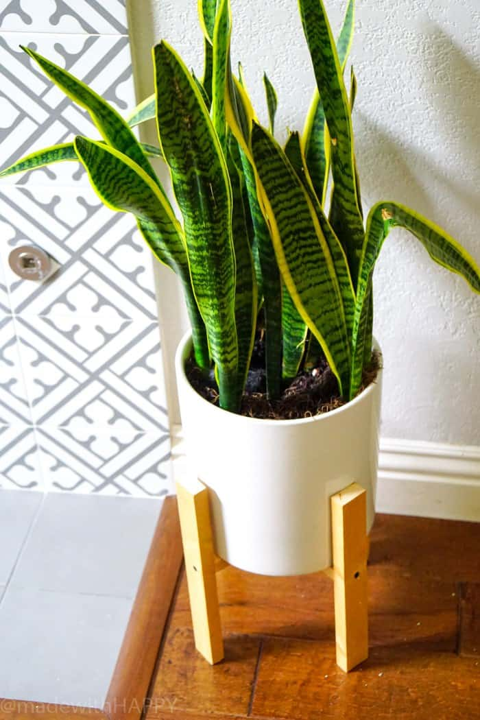 Mid-Century Modern Plant Stand.  DIY Modern Planter Tutorial.  DIY Mid-Century Plant Stand.