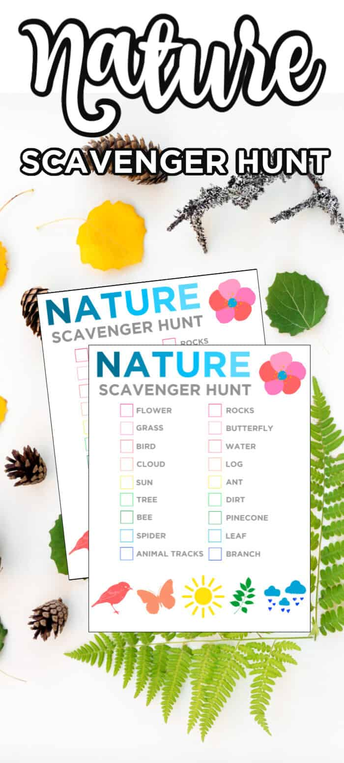 Nature Scaveger Hunt For kids