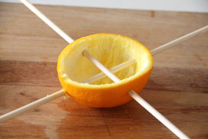two dowels in orange
