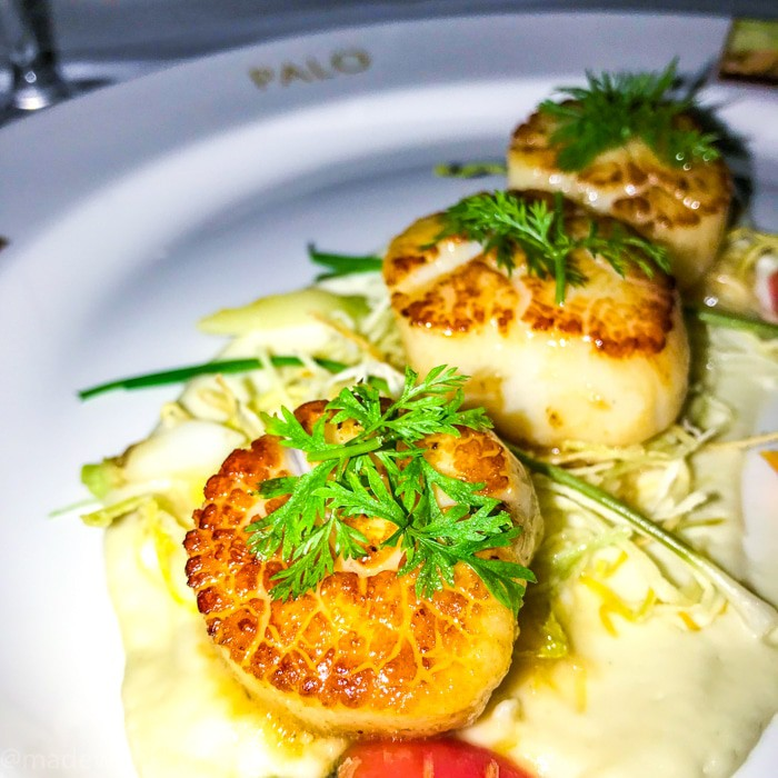 Seared Sea Scallops at Palo Restaurant on Disney Cruise. What is really like on a Disney WDW Cruise. Answering questions about Disney Cruise and the Disney Dream. What to expect on a Disney Cruise. The Disney Cruise as a family of four!