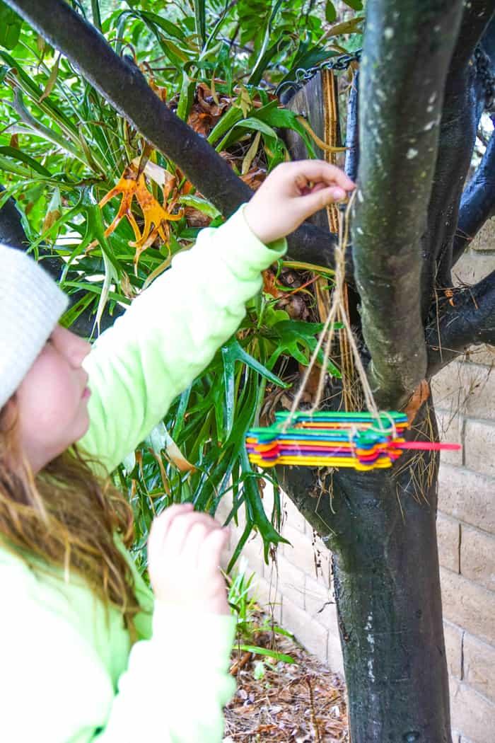 Girl hanging birdfeeder in tree