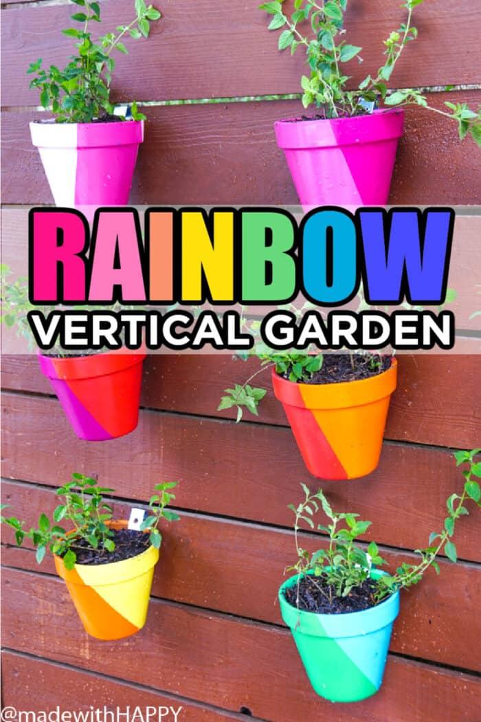 Rainbow Vertical Garden
