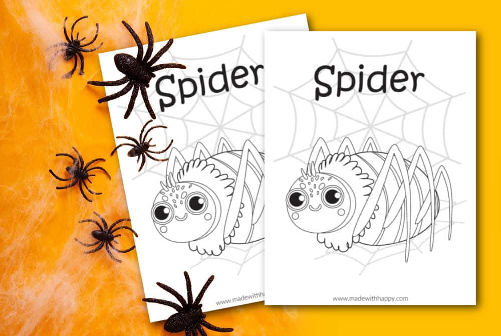 spider coloring page for kids printable
