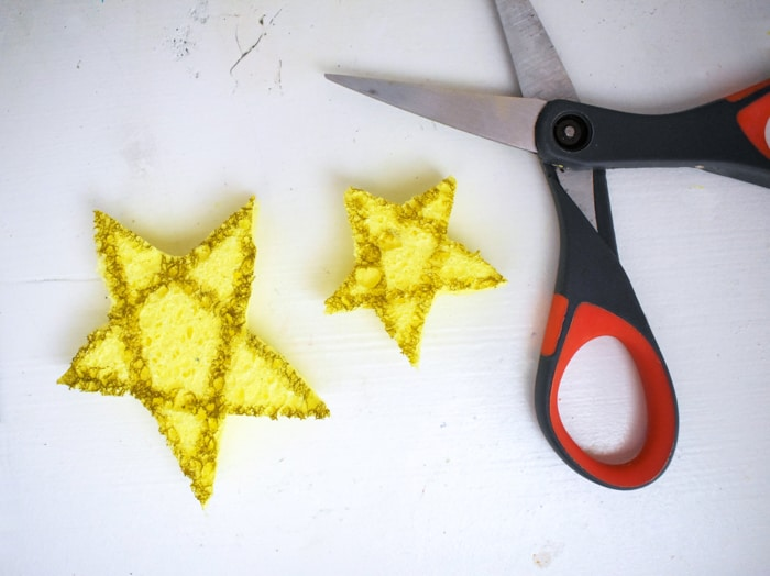 Cut out star out of sponge