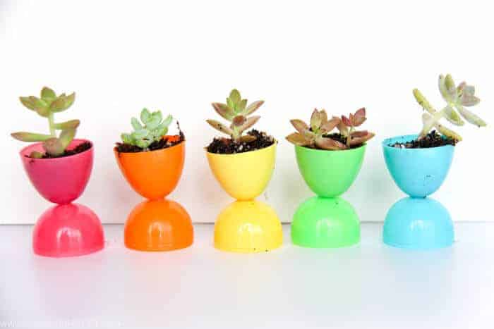 Plastic Easter Egg Pots | Succulent Egg Pots | Flowers in Easter Eggs | Easter Decorations | Easter Table Settings | Rainbow Easter | www.madewithHAPPY.com