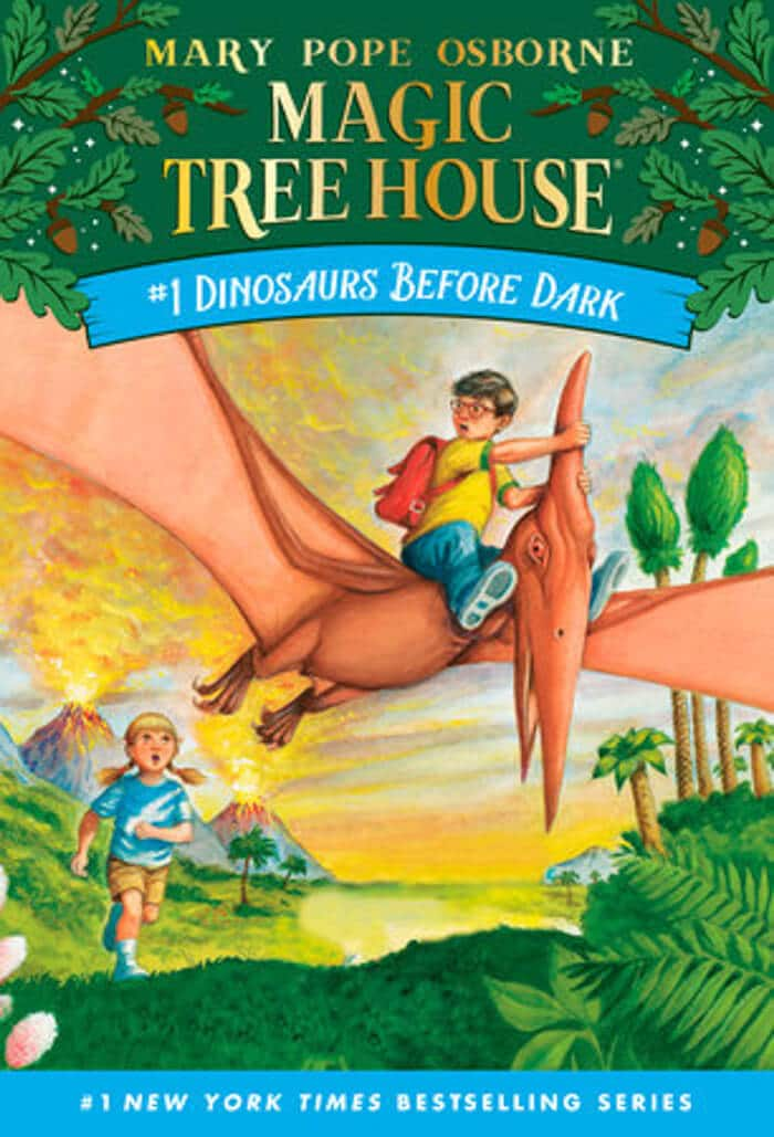 Magic Tree house. Top 10 Chapter Books for young readers. We're sharing our top picks for young readers that are looking for some great chapter books. www.madewithhappy.com