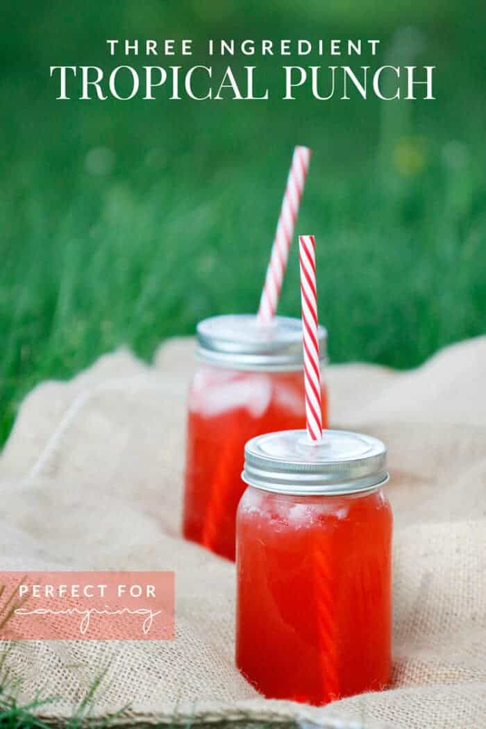 Three-Ingredient-Tropical-Punch