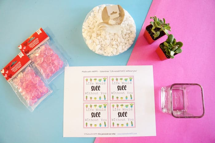 No-candy Valentines Ideas. Valentines Day Succelents are great for older school grade kids. Free printable Valentines are great with succulents are all the gifts needed.