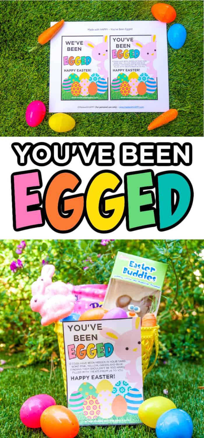you ve been egged instructions