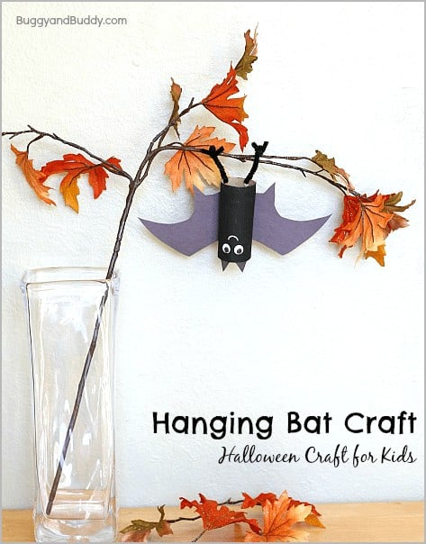 bat header