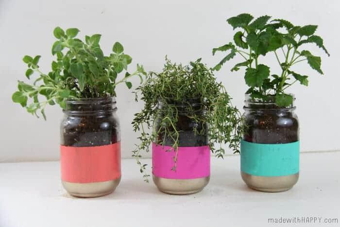 Bright Colored Herb Garden - Mason Jar Crafts - Easy Pop of Color - Spring Garden   Painted Mason Jar Garden   Modern Herb Garden - www.madewithHAPPY.com