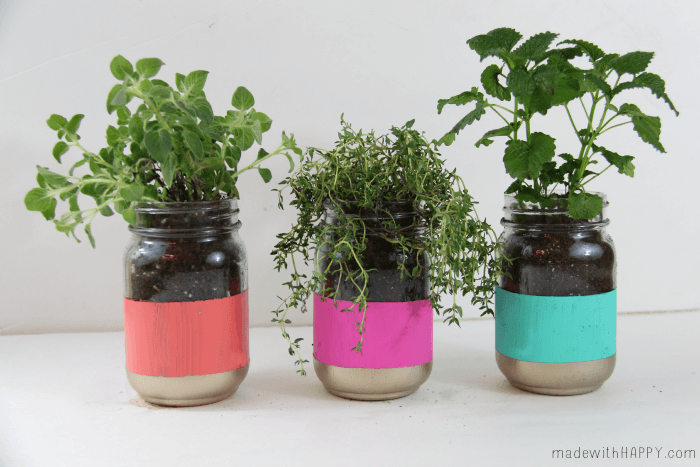 Bright Colored Herb Garden - Mason Jar Crafts - Easy Pop of Color - Spring Garden - www.madewithHAPPY.com