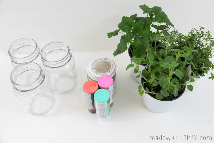 Bright Colored Herb Garden - Mason Jar Crafts - Easy Pop of Color - Spring Garden | Painted Mason Jar Garden | Modern Herb Garden - www.madewithHAPPY.com