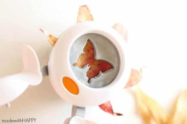 butterfly-paper-cutter