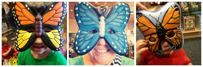 butterfly-wonderland-9