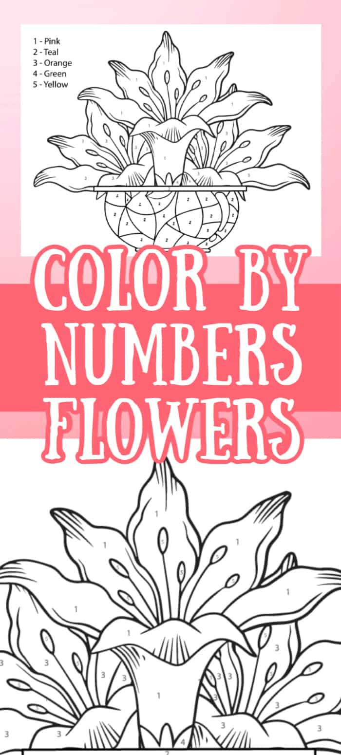color by number flowers printable