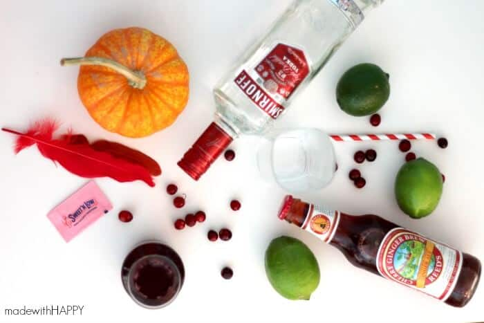cranberry-ginger-cocktail