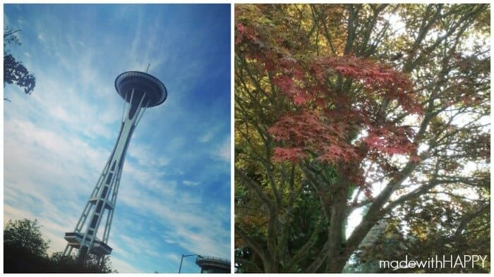 fall-in-seattle