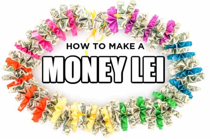 Rainbow Money lei