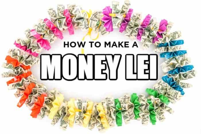 Rainbow Money lei