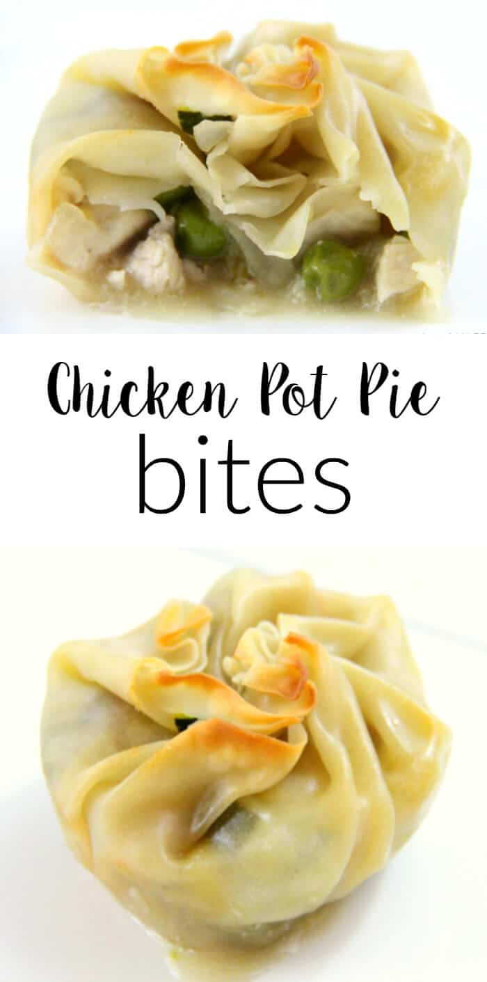 Reduced Fat Chicken Pot Pies | Wonton Chicken Pot Pies | Healthier Version of Chicken Pot Pies | Simply Raised Chicken | Kid Friendly Chicken Pot Pies | www.madewithhappy.com