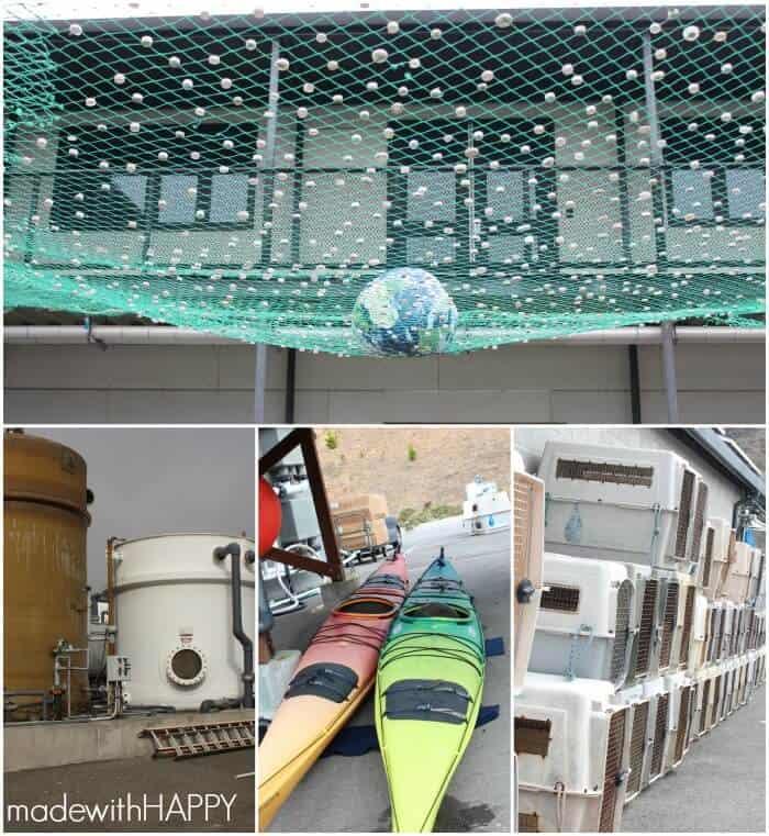 marine-mammal-center-facility