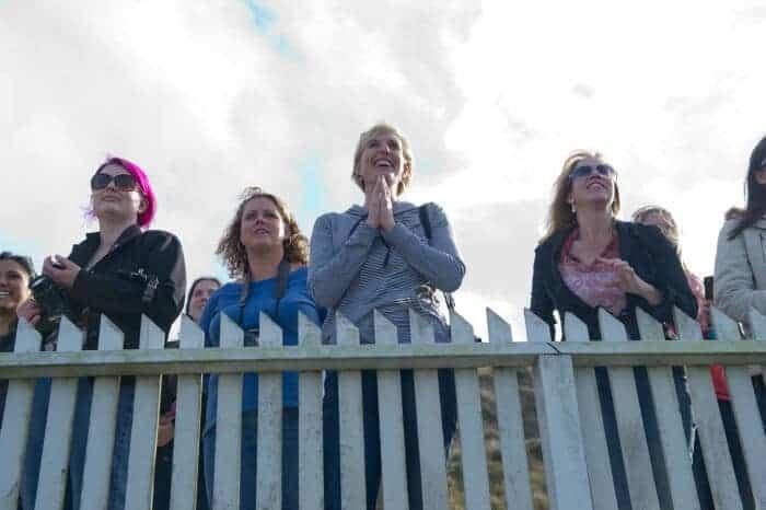 sea-lion-release-bloggers