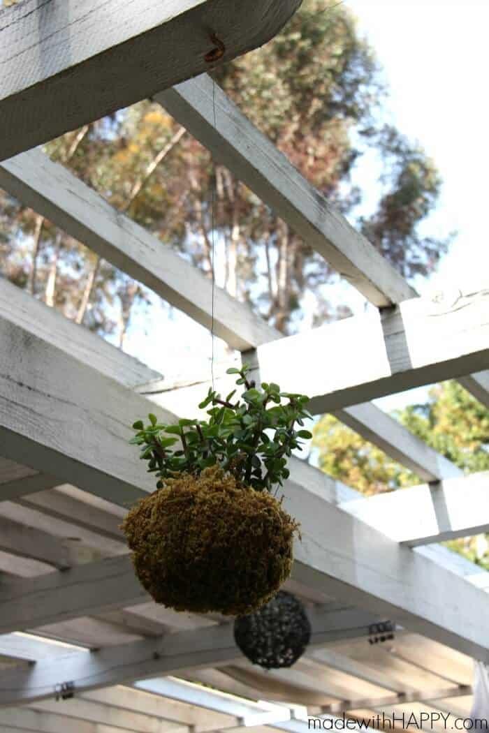 DIY String Garden | Floating Plant Balls | Modern Gardens | Hanging Plants | www.madewithHAPPY.com