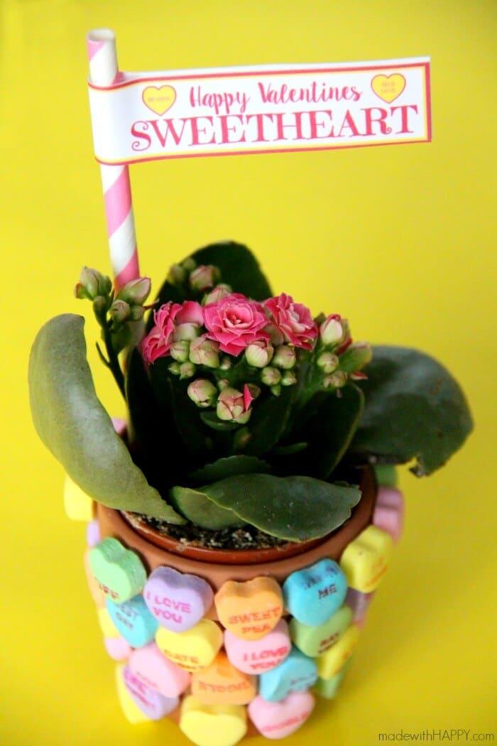 Sweetheart Flower Pot