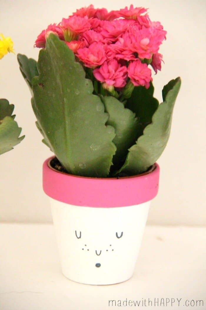 dollar tree flower pot